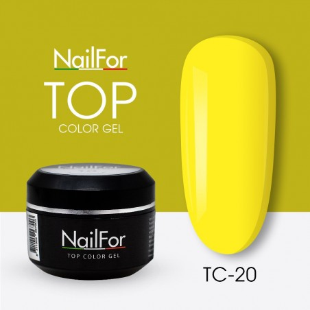 colore gel per unghie, nail art, nails Painting Gel - TOP COLOR 20   Nailfor 4,74€