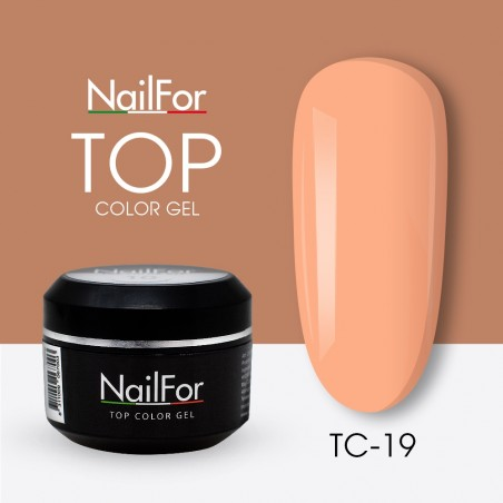 colore gel per unghie, nail art, nails Painting Gel - TOP COLOR 19 | Nailfor 4,74€