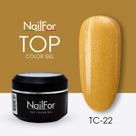 colore gel per unghie, nail art, nails Painting Gel - TOP COLOR 22 | Nailfor 4,74€